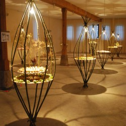 Birgit Kratzheller: Installation TASTY BULBS