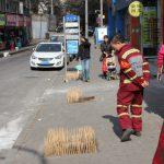 Project 4: 'Tree sticks'